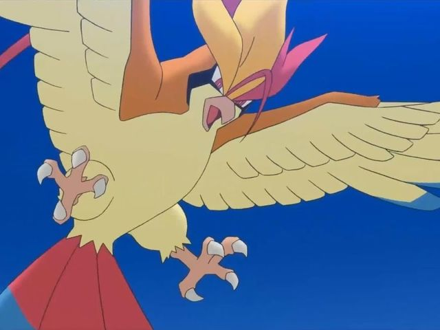 It was Pidgeot!