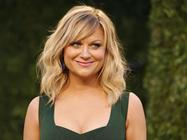 Is Amy Poehler from the South?