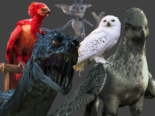 Conoces a todas las criaturas del mundo de Harry Potter? | Playbuzz