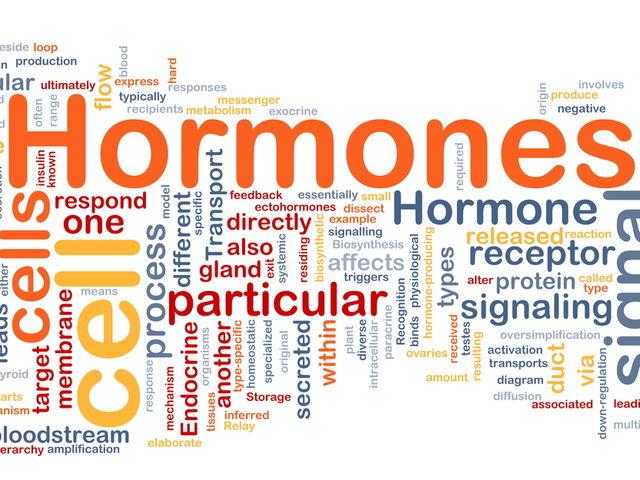 Pousse des cheveux et hormones