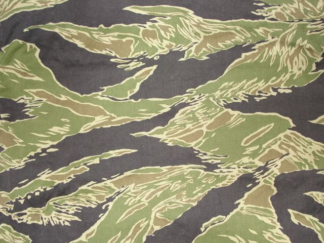 Can You Name These Famous Military Camo Patterns Playbuzz Mesmerizing Camo Patterns