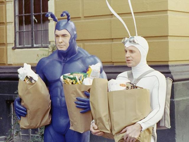 What animal is The Tick's sidekick's costume supposed to resemble?