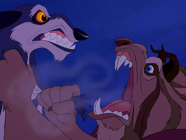 How many wolves attacked Belle?