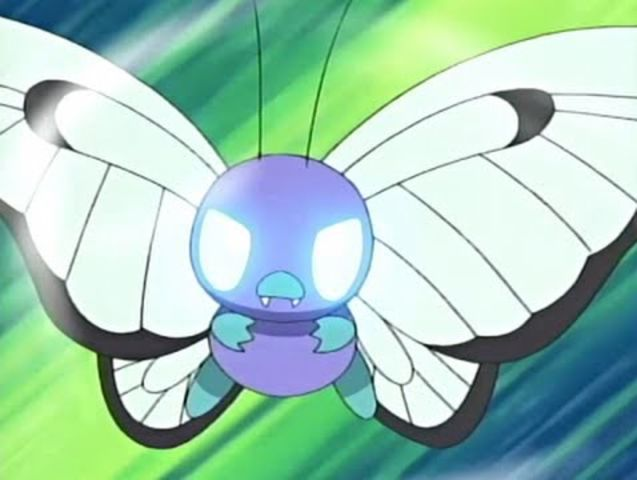 Caterpie's final evolution is Butterfree!
