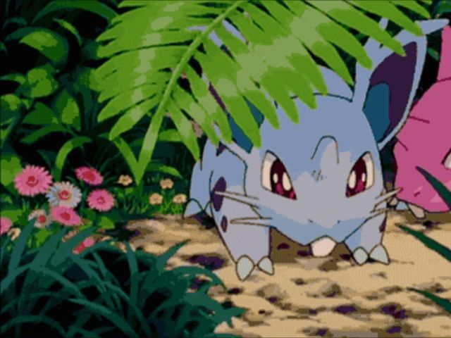 What is the female Nidoran's final evolution?