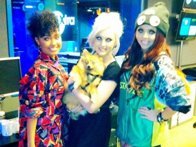 little mix ready to fly book free