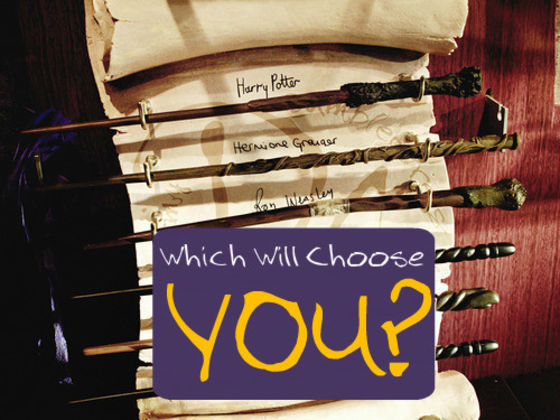 Which harry potter wand would choose you as its owner for Harry potter wand owners