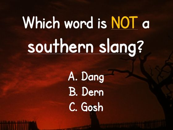 Can You Spot The Word That Doesn't Belong Among These Southern Slang Words?