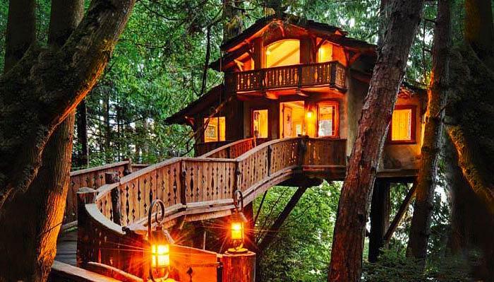 Amazing Architecture Amazing Tree Houses To Live In Largest Home Design Picture Inspirations Pitcheantrous