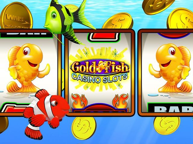 Test your knowledge gold fish casino slots quiz playbuzz for Gold fish casino slots