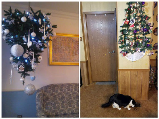 Christmas Tree Alternatives For Cat Owners.33 Genius Christmas Tree Hacks For Pet Owners Playbuzz