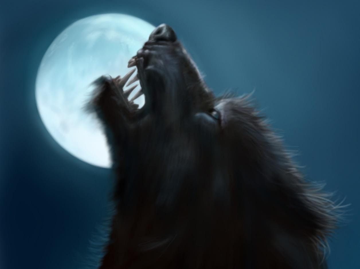 Hombre Lobo [Ronda Nº7] - Página 12 2f538b04-7657-438a-a07a-d2a09ff83f76