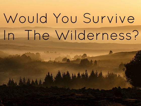would you survive in the wilderness playbuzz