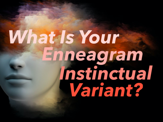 What is Your Enneagram Instinctual Variant?