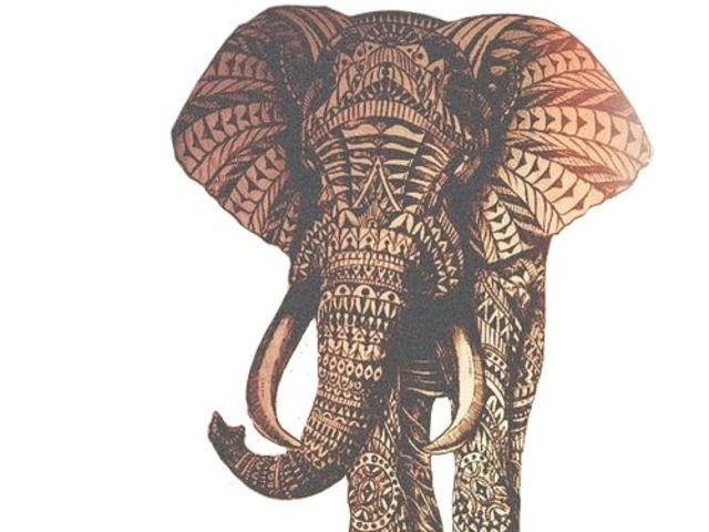 Elephantselephants Everywhere March 2016