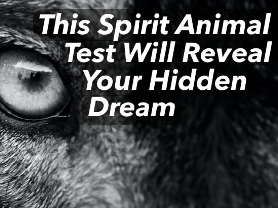 This Spirit Animal Test Will Reveal Your Hidden Dream