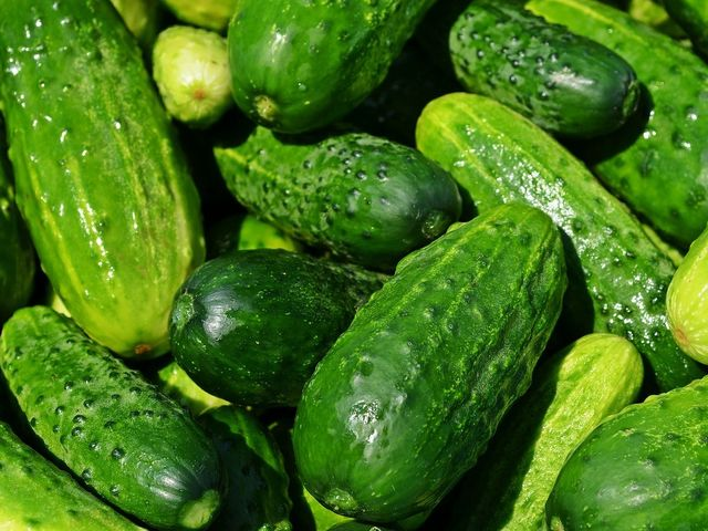 Cucumbers are fruit.
