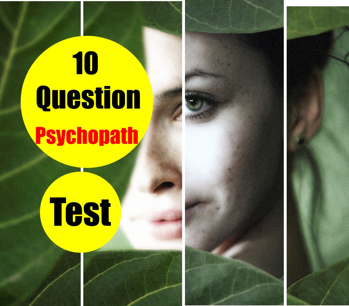 Sociopath test for someone else