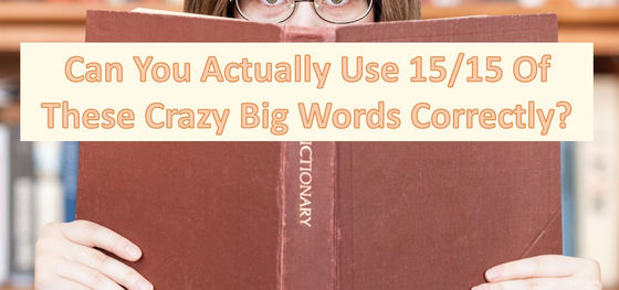 Can You Actually Use 15/15 Of These Crazy Big Words Correctly?