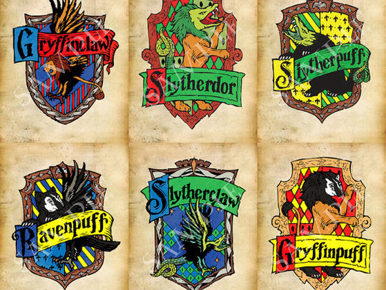 Which Hybrid Hogwarts House Are You?