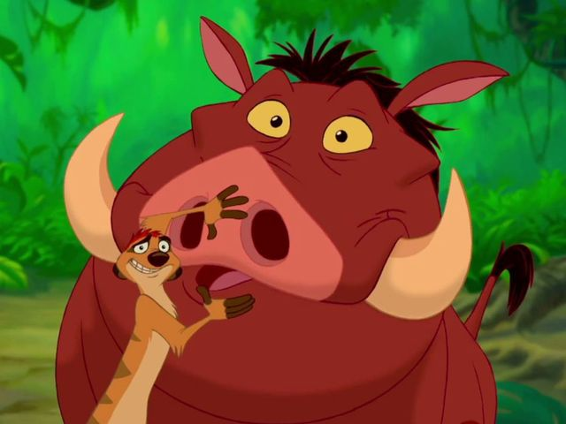 Hakuna Matata indeed...they're Timon and Pumba of course!