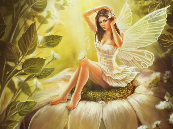 Image result for photo of fairy