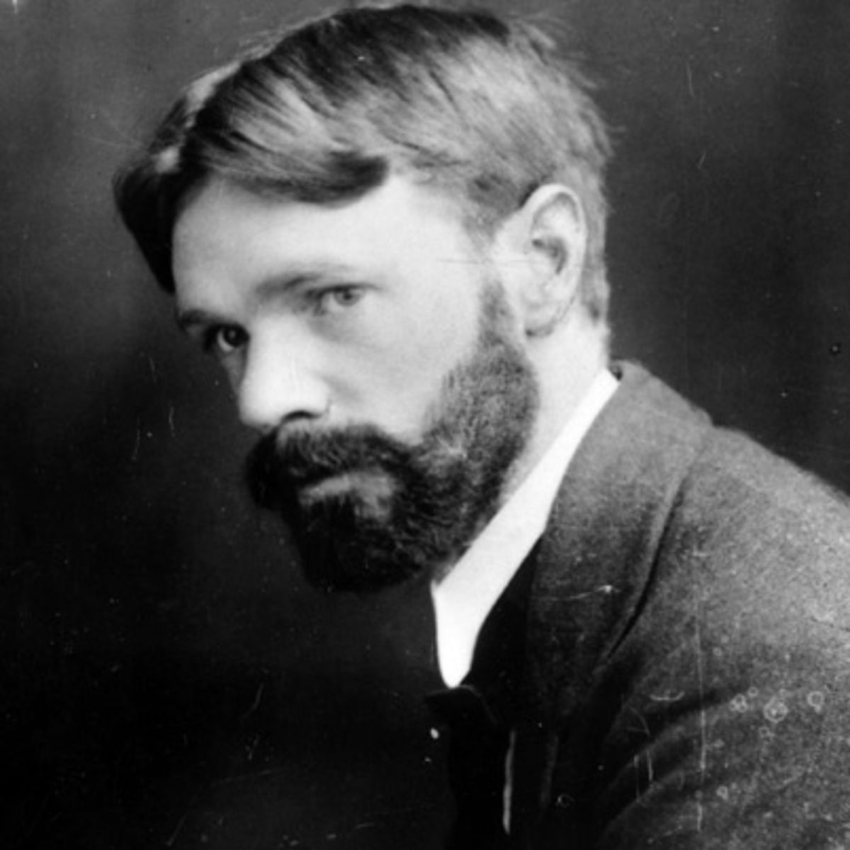 d.h lawrence essays It was dh lawrence's great misfortune that he permitted himself to be swept up in a [another rexroth essay on dh lawrence] [other rexroth essays] [rexroth.