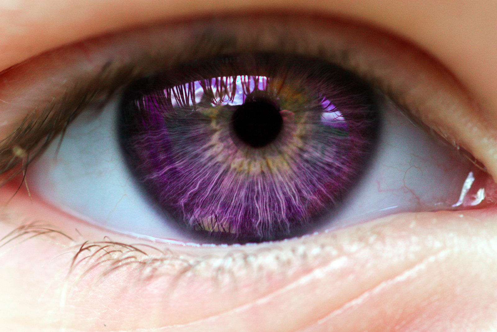 What Should Your Fantasy Eye Color Really Be Playbuzz