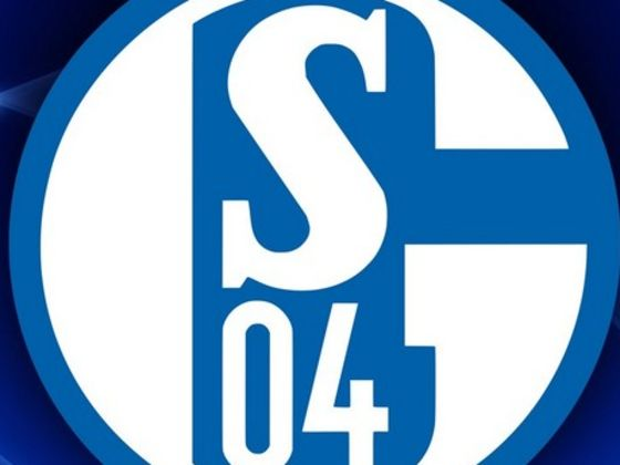 transfers schalke 04