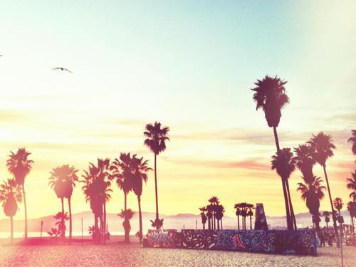 California Swag Tumblr 62849