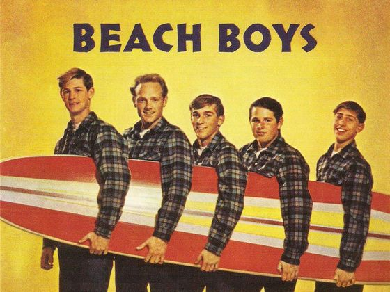 Which Beach Boys Song Are You
