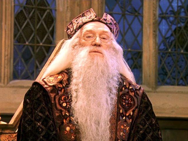 Image result for sorcerer's stone dumbledore