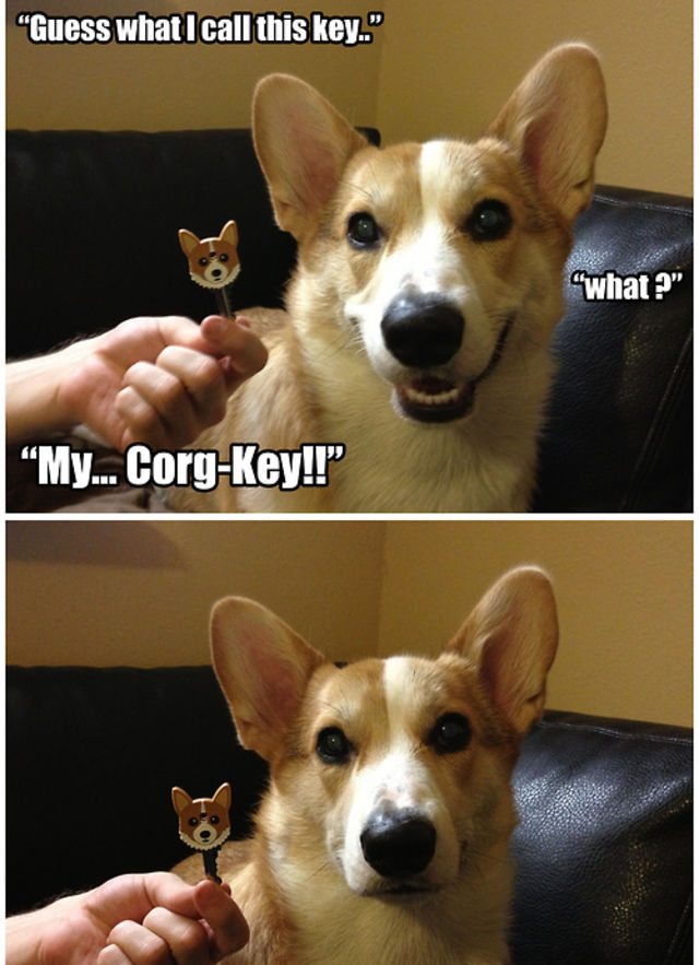 Dog Friends Puns