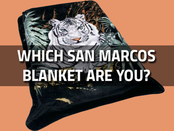 694b97e6 b1c5 4402 ad5a 41b69b6765b2_560_420 quiz which san marcos blanket are you? playbuzz