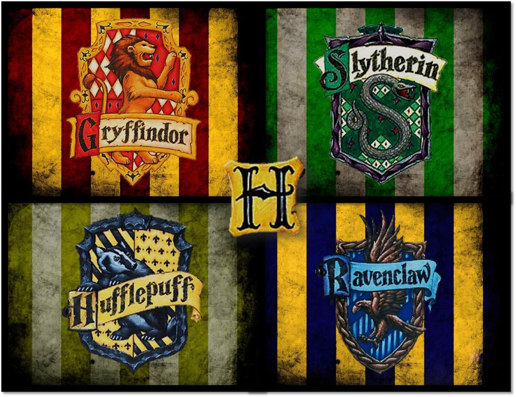 Which Hogwarts House Are You In
