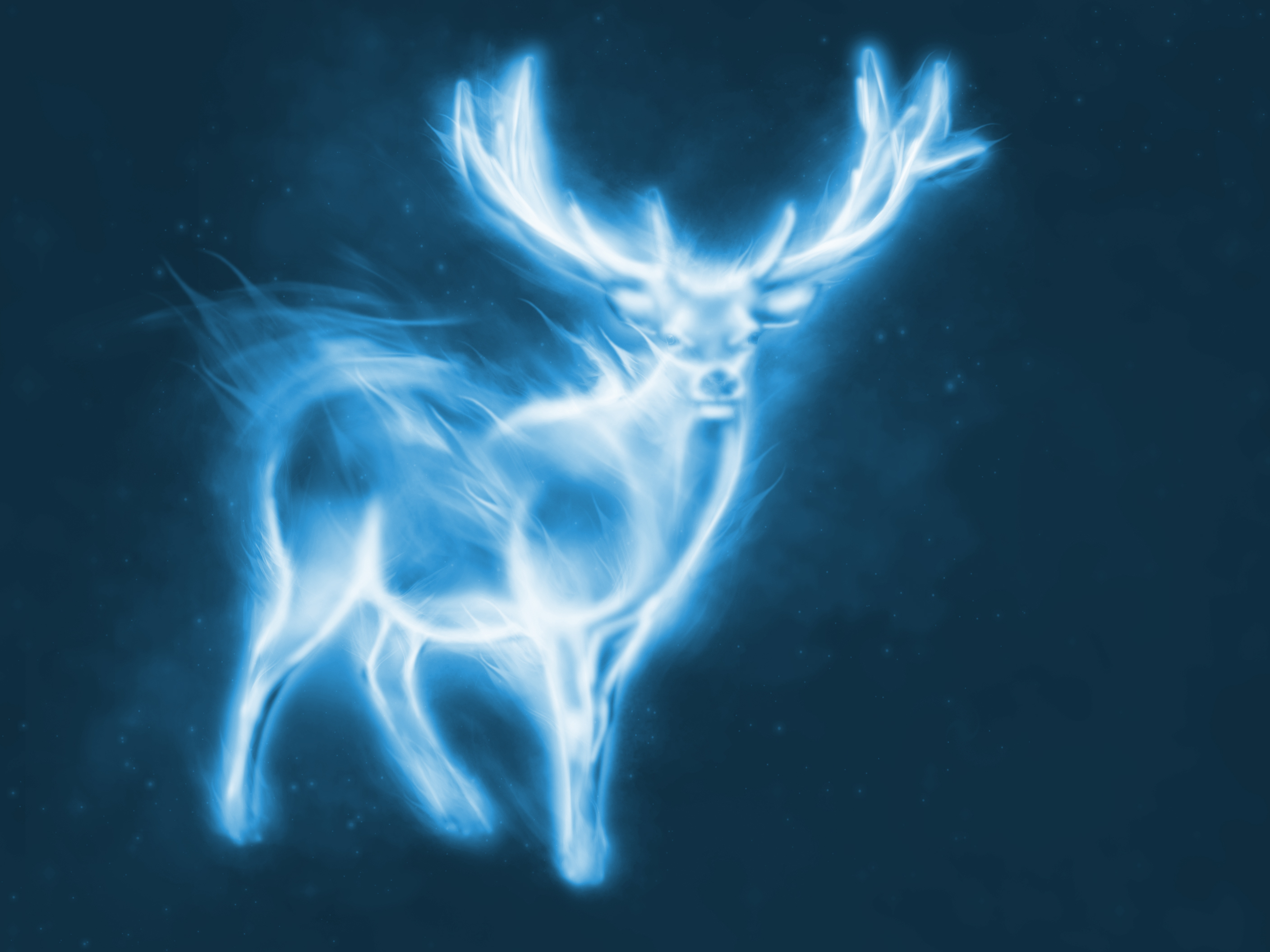 What is Your Patronus Charm