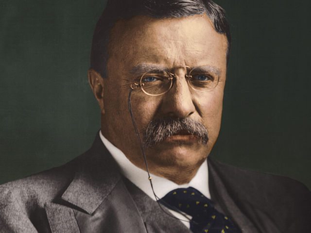 What Party Did That President Belong To?   Playbuzz Theodore Roosevelt Grant