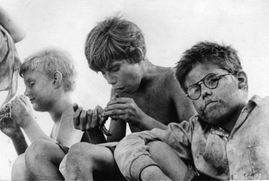 For Anyone Who Knows About The Lord of the Flies?