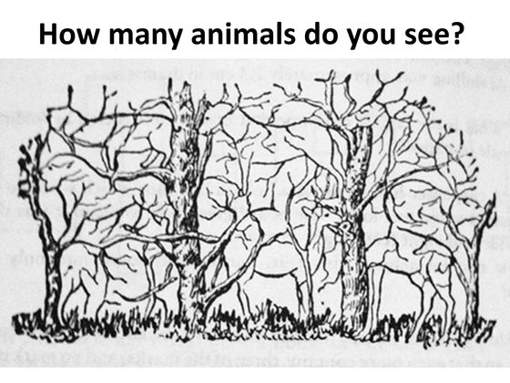 The Number Of Hidden Objects You See Can Determine If Youre Smarter Than Average