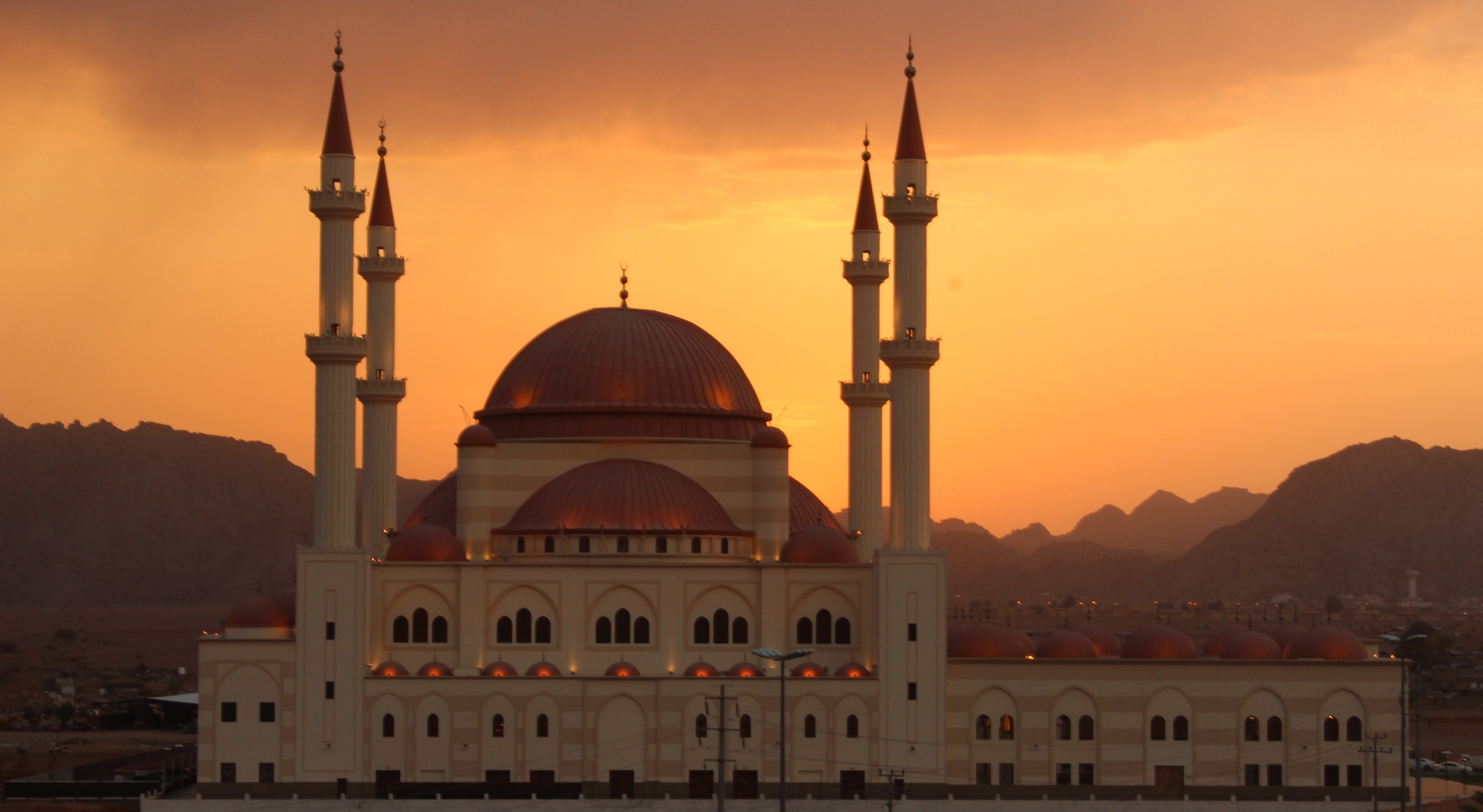 islamic story Stories from the lives of the prophets, imams, and companions.