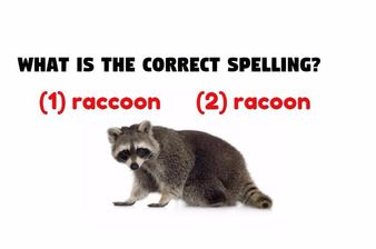 This Spelling Test Is Driving The Internet Wild