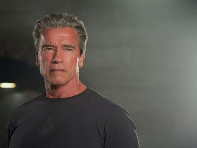 Com qual ator brasileiro Arnold Schwarzenegger já trabalhou?