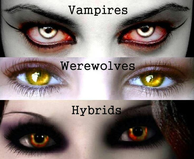 Are You A Vampire Or Wearwolf Playbuzz