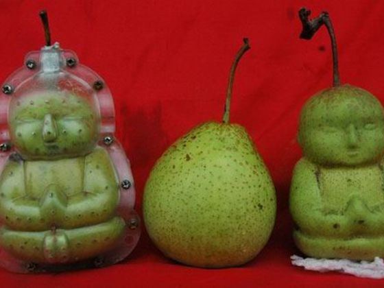 weird fruits fruits in spanish