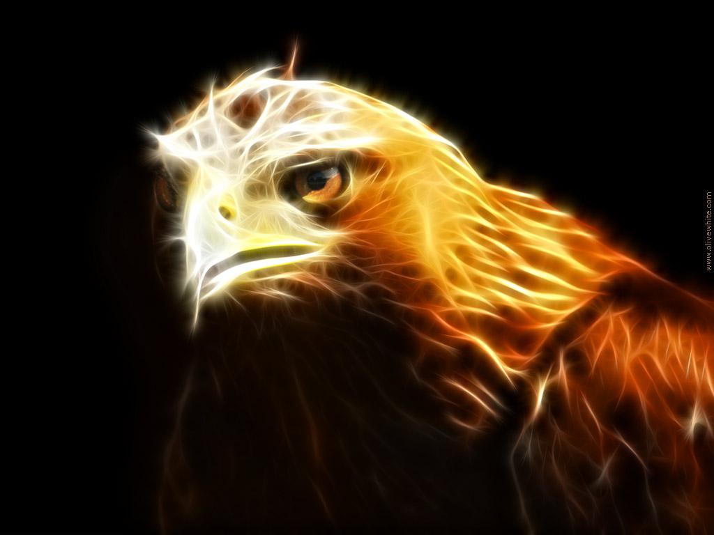 Resultado de imagem para eagle spirit animal