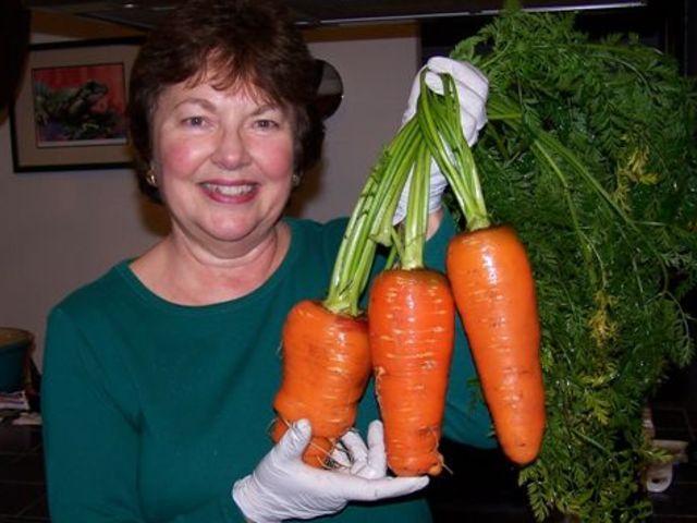 Organic Carrots vs Non Organic Carrots Are These Carrots Organic