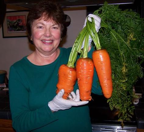 Organic Carrots vs Non Organic Carrots And Non-organic Foods