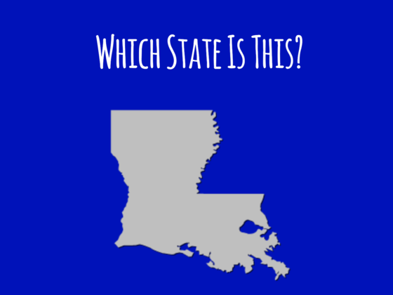 Only U.S. Geography Experts Can Identify At Least A Third Of The States By Their Silhouettes!