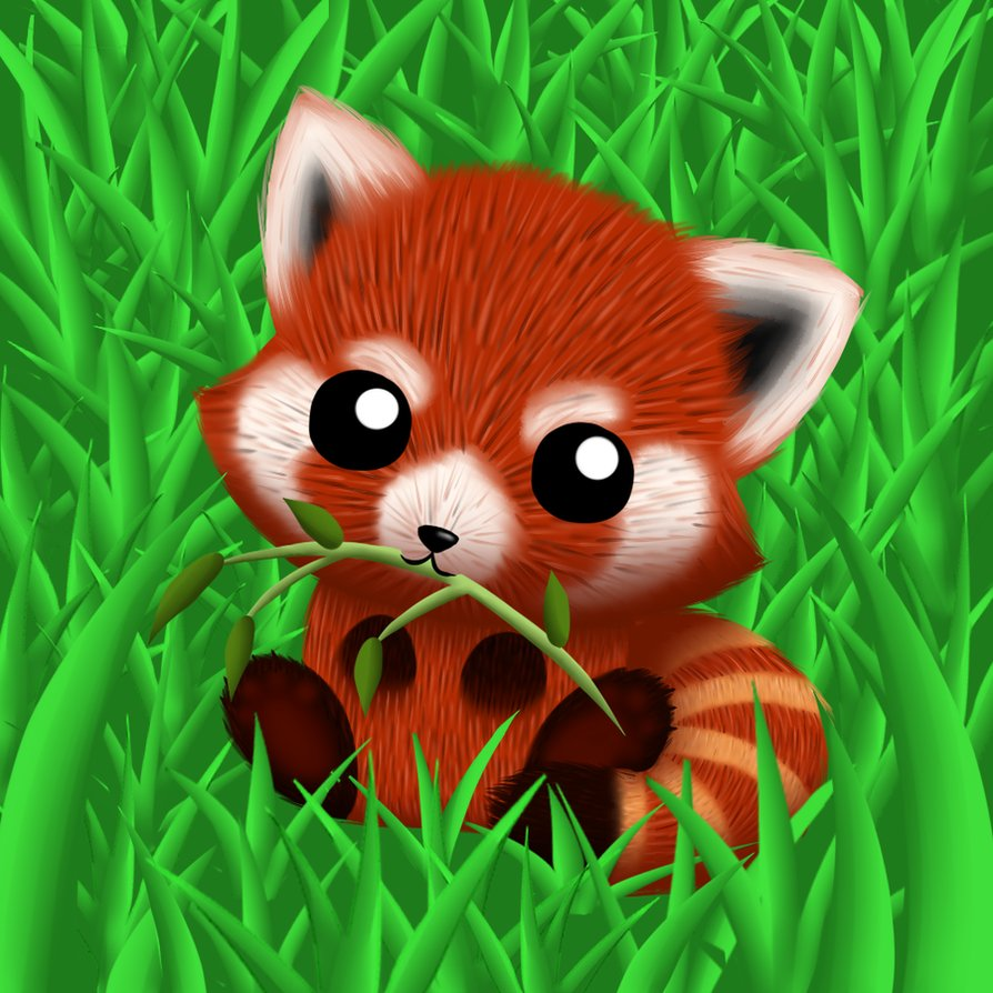 Cute Red Panda Anime | Wallpapers Gallery