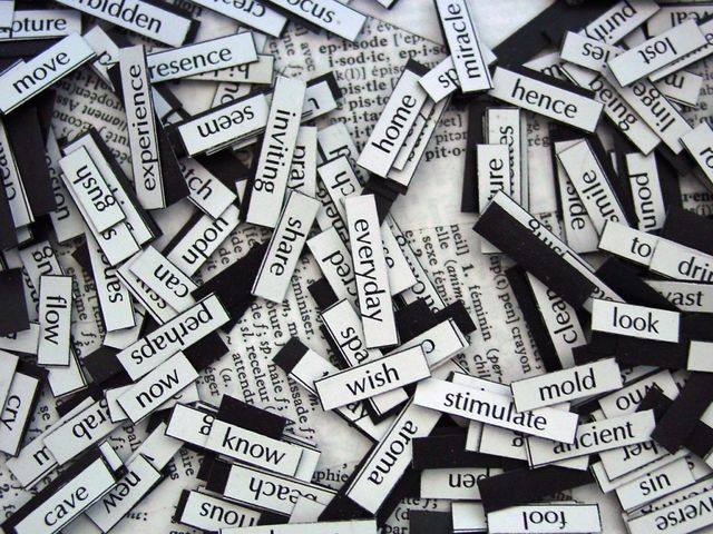 Verbal Linguistic - Word Smart
